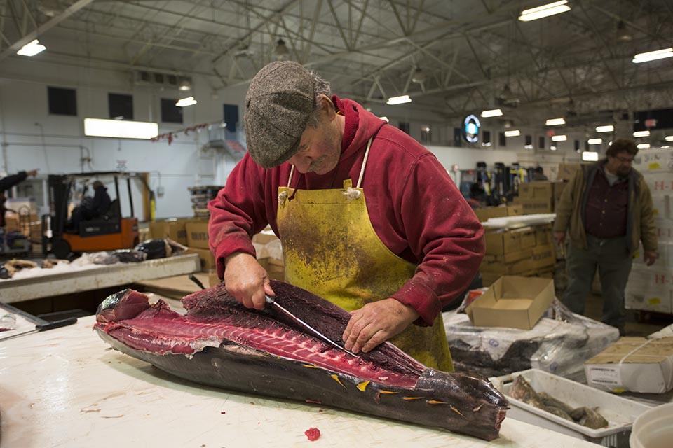 Man cutting yellowfin tuna at the New Fulton Fish Market.