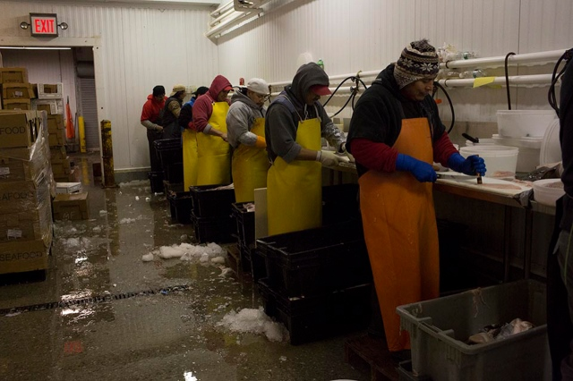 New Fulton Fish Market