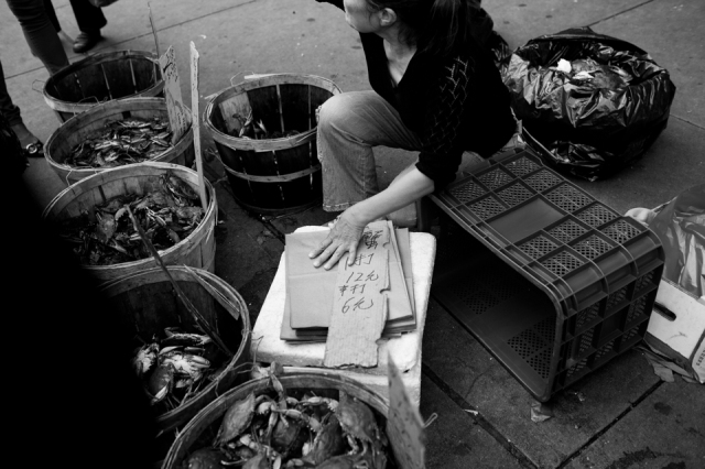 A woman sells seafood next to the Manhattan Bridge, Lower East Side. ©Sarah Blesener