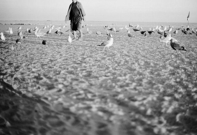 ©Daniela Constantini