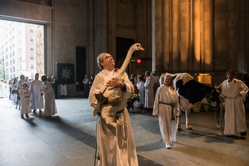 New York 2016-ICP-The_Feast_of_Saint_Francis_and_Blessing_of_the_Animals